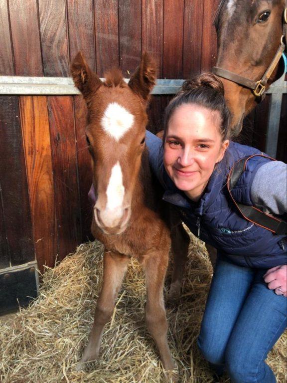 Lucy foal