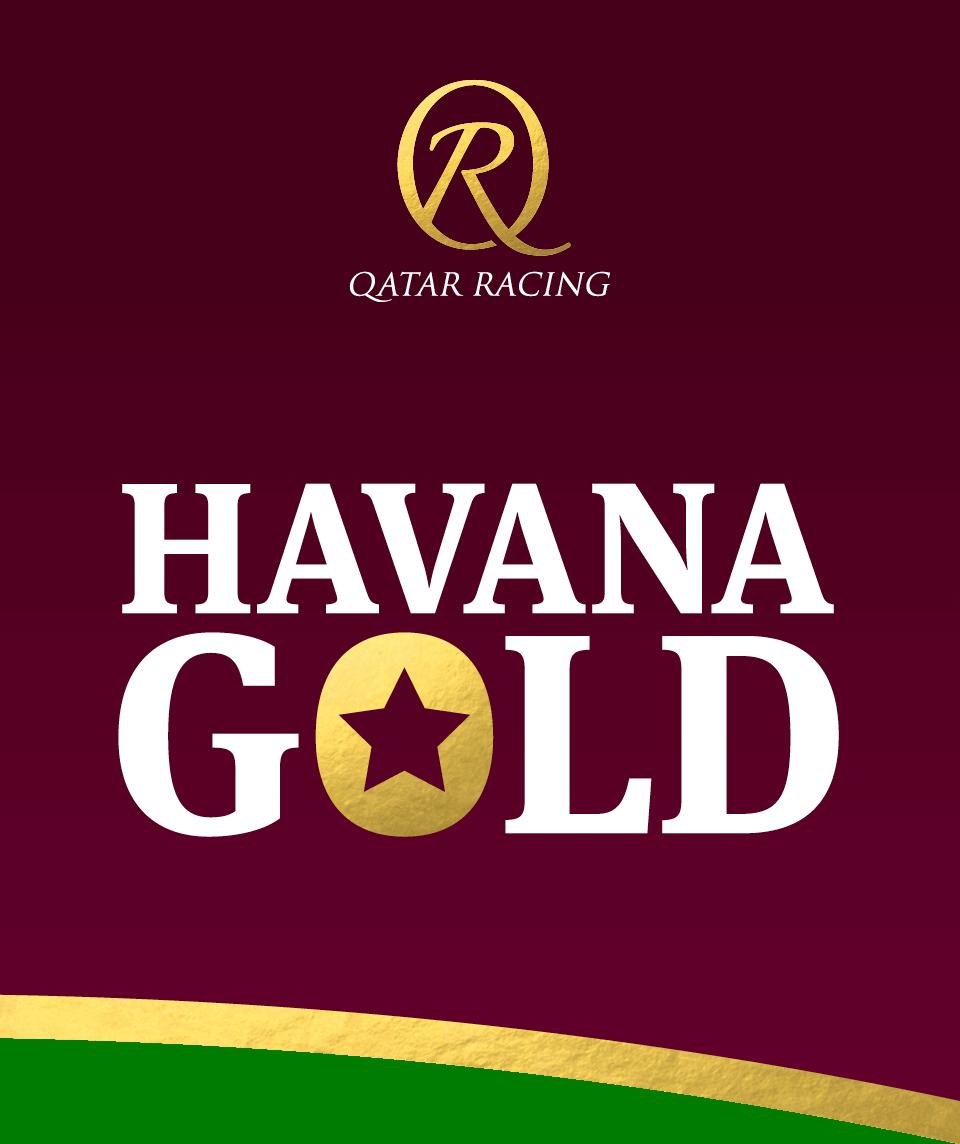 Havana Gold Hoempage Ribbon